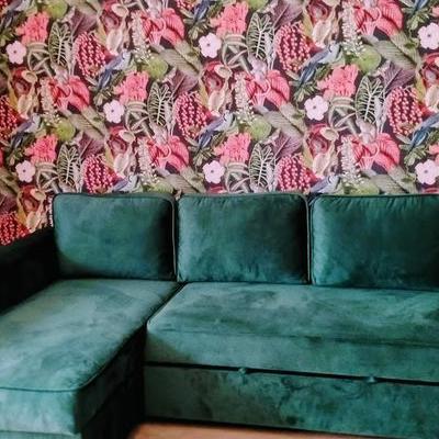 kanapa narozna 16